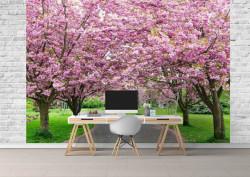 Fototapet, Aleea de primăvara