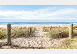 Fototapet, O zi pe plajă