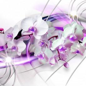 Multicanvas, Orhidea albă și linii de culoare liliac