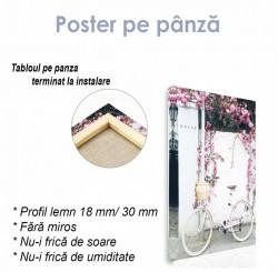 Poster, Colțișorul roz