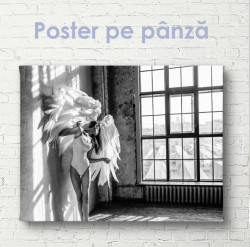 Poster, Înger în sala de balet