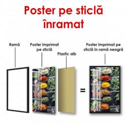 Poster, Linguri cu condimente colorate