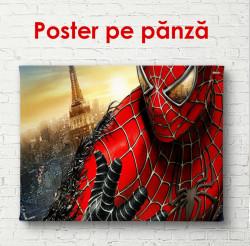 Poster, Omul de păianjen aproape
