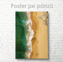 Poster, Plaja sălbatică