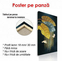 Poster, Ploaie
