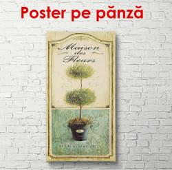 Poster, Ramuri verzi