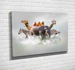 Tablouri Canvas, Animalele africane în nori