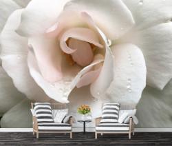 Fototapet 3D, Floare delicată cu picături de rouă