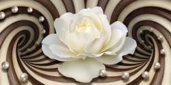 Fototapet 3D, Un trandafir alb pe un fundal de linii abstracte maro