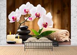 Fototapet, O orhidee frumoasă