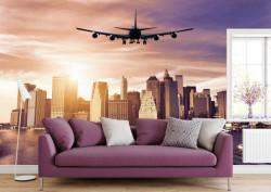 Fototapet, Un avion pe cerul roz