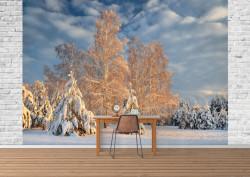Fototapet, Un peisaj de iarnă