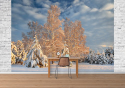 Fototapete Peisaj de iarnă