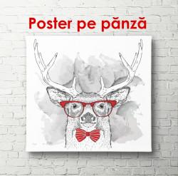 Poster, Cerbul cu ochelari roșii pe fundal alb