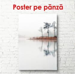 Poster, Lacul într-un parc pe ceață