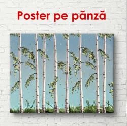 Poster, Mesteacan pictat