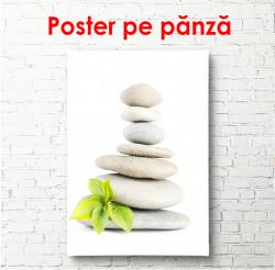 Poster, Pietre albe și frunze verzi pe un fundal alb