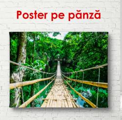 Poster, Podul de lemn de-a lungul pădurii verzi