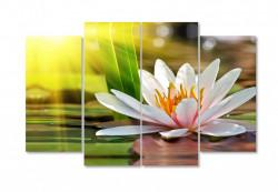 Tablou modular, Floare de lotus dimineața devreme
