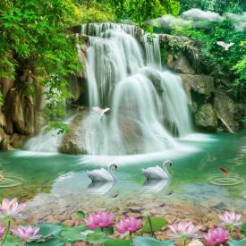 Fototapet, Lebedele înoată în apropierea cascadei