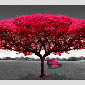 Fototapete, Un copac roz.