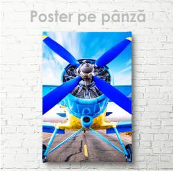 Poster, Avion de epocă