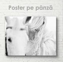 Poster, Calul alb