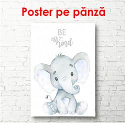 Poster, Elefant pe fundal alb