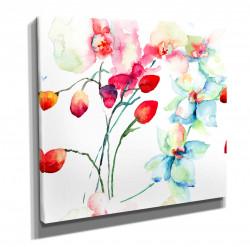 Poster, Flori de acuarelă