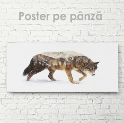 Poster, Lupul