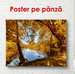 Poster, Parcul de toamnă cu o cascadă