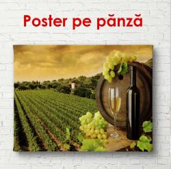 Poster, Podgoria la apus