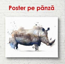 Poster, Rinocer pictat în acuarelă