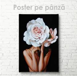 Poster, Trandafir