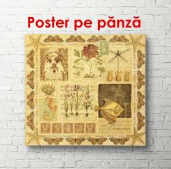 Poster, Un poster maroniu