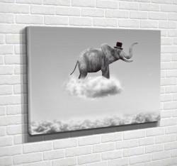 Tablouri Canvas, Elefantul alb-negru în nori