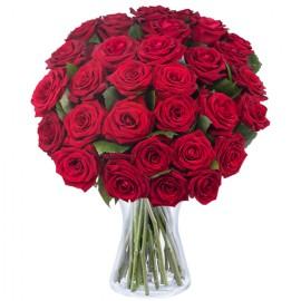 Poze Dragoste si Fantezie: 31 de trandafiri rosii
