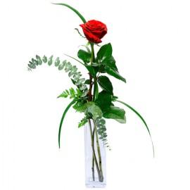 Poze Inima Mea Este a Ta: 1 trandafir rosu