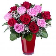 Explozie de Culoare: 11 trandafiri rosii si roz