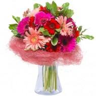 Atingere Tandra: grebera roz