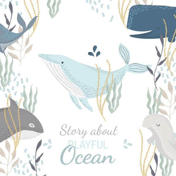 Colecția Ocean