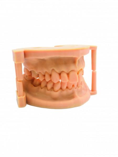 Rășină DruckWege Type D Dental