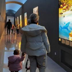 Iluminat special muzeal