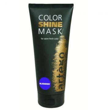 Masca profesionala pentru par vopsit Artego Color Shine Blueberry