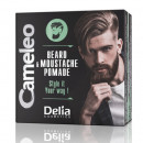 Pomada de par si mustata Delia Cosmetics