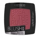 Fard de obraz Catrice Blush Box 050 Burgundyv