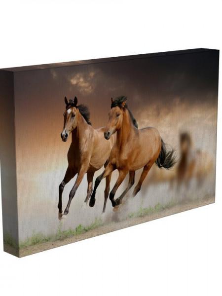Poze TABLOU FRE HORSES