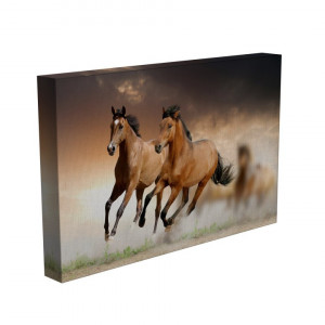 TABLOU FRE HORSES