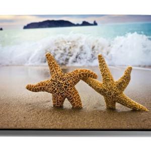 TABLOU SEA STARS
