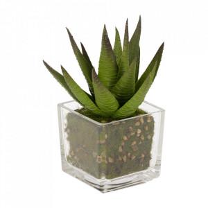 Planta artificiala cu ghiveci din polietilena si sticla 15 cm Hawortia Kave Home